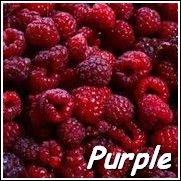 Brandywine Purple Raspberry Plant