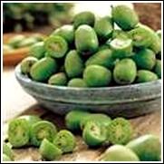 Buy Issai Kiwi Plants