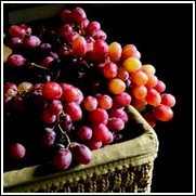 Red Flame Seedless Grape Vine