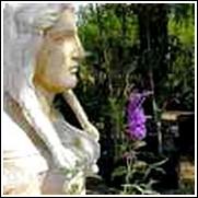 Bonnie Butterfly Bush